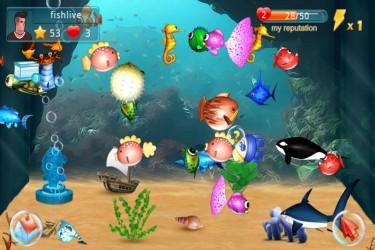 Imagen de Peces (Fish Live)