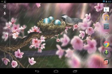 Imagen de Season Zen HD