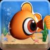Peces (Fish Live)