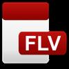 FLV Player