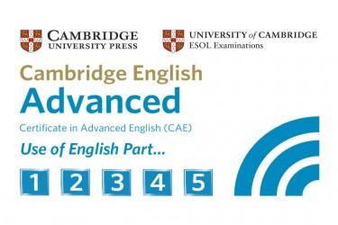 Imagen de CAE English Practice Test