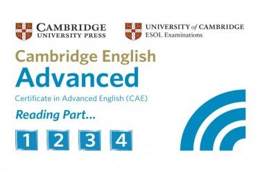 Imagen de CAE Reading Practice Test