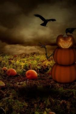 Imagen de 100+ Pumpkin Sudoku