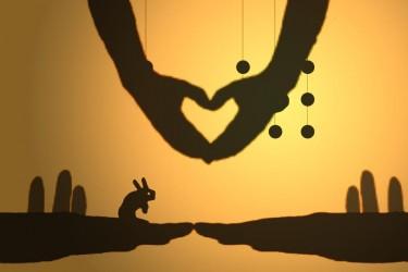 Imagen de Shadow Love