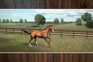 Imagen de My Horse