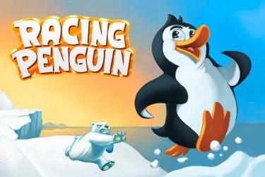 Imagen de Racing Penguin Flying Free